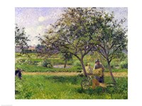 The Wheelbarrow, Orchard, 1881 by Camille Pissarro, 1881 - various sizes