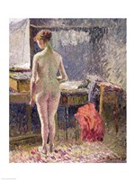 Female Nude seen from the Back, 1895 Fine Art Print