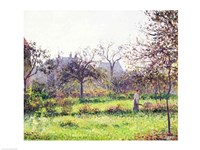 Morning Sun, Autumn, Eragny, 1897 by Camille Pissarro, 1897 - various sizes