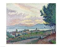 St. Tropez, Pinewood, 1896 Fine Art Print