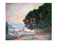 Forest near St. Tropez, 1902 Fine Art Print
