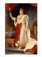 Napoleon in Coronation Robes, c.1804 Fine Art Print