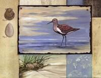 Sandpiper Collage II mini Framed Print