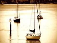 St, Augustine Harbor II - mini Fine Art Print