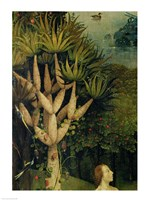 The Tree of the Knowledge of Good and Evil, detail from the right panel of The Garden of Earthly Delights, 1500 by Hieronymus Bosch, 1500 - various sizes