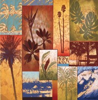 """Trade Winds by Val Bustamonte - 27"""" x 27"""""""