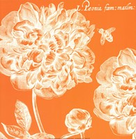 Summer Bees III Fine Art Print