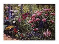 Midsummer Day's Garden II Fine Art Print