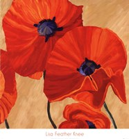 Oriental Poppy R Fine Art Print