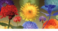 Sunflower Fireworks Fine Art Print