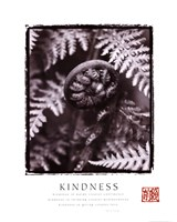 "Kindness - Fiddleheads - 22"" x 28"""