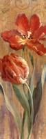 Parrot Tulips on Gold II Framed Print