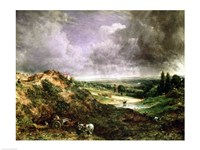 Hampstead Heath Fine Art Print