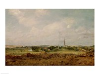 View of Salisbury Fine Art Print