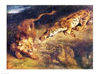 Tiger and Lion Fine Art Print