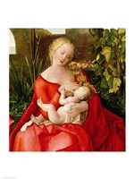 Virgin and Child 'Madonna with the Iris', 1508 - red dress Fine Art Print