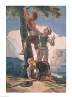 Boys Climbing a Tree Fine Art Print