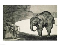 Folly of Beasts, from the Follies series Fine Art Print