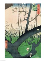 Branch of a Flowering Plum Tree Fine Art Print