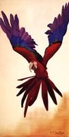 Parrot Fine Art Print