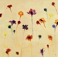 "Blurred Dream by Randy Hibberd - 30"" x 30"""