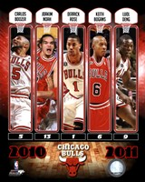 Chicago Bulls Team Comp 2010-11 Fine Art Print