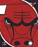Chicago Bulls Team Logo Fine Art Print