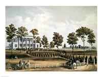 The Hermitage Fine Art Print
