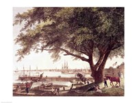 The City and Port of Philadelphia Fine Art Print