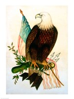 Bald eagle with flag - various sizes