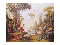 Lake with geese, storks, parrots and herons, from the Salon of Gilles Demarteau Fine Art Print