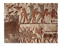Harvesting papyrus and a group of cows, Old Kingdom - various sizes