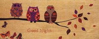 Good Night Owl Fine Art Print