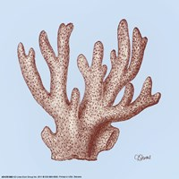 Coral I Fine Art Print
