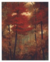 Autumn Woods Fine Art Print