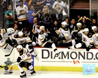 "Boston Bruins Bench Celebration Game 7 of the 2011 NHL Stanley Cup Finals(#55) - 10"" x 8"" - $12.99"