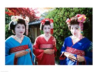 Three geishas, Kyoto, Honshu, Japan Fine Art Print