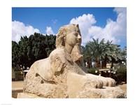 Alabaster Sphinx, Memphis, Egypt Fine Art Print