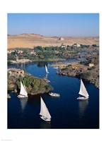 Feluccas on the Nile River, Aswan, Egypt Fine Art Print