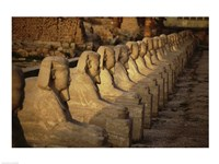 Avenue of the Sphinxes Karnak Temple Luxor Egypt Fine Art Print