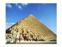 Giza Pyramids, Giza, Egypt (camel) - various sizes