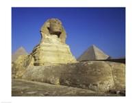 Sphinx, Giza, Egypt Fine Art Print