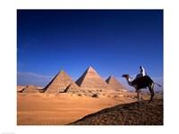 Riding a camel near pyramids, Giza Pyramids, Giza, Egypt Fine Art Print