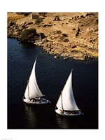 Two sailboats, Nile River, Egypt Fine Art Print