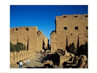 Avenue of Sphinxes, Temples of Karnak, Luxor, Egypt Fine Art Print