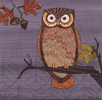 Awesome Owls II Framed Print