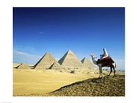 Man riding a camel near the pyramids, Giza, Egypt Fine Art Print