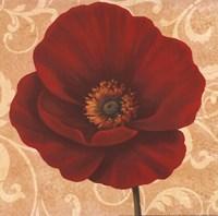 Poppies II Fine Art Print