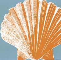 Graphic Shell IV Fine Art Print