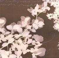 Wishes & Leaves I Fine Art Print